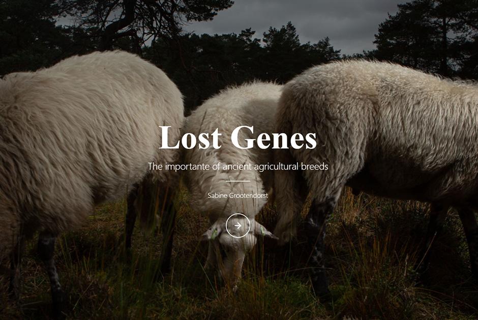 Lost Genes