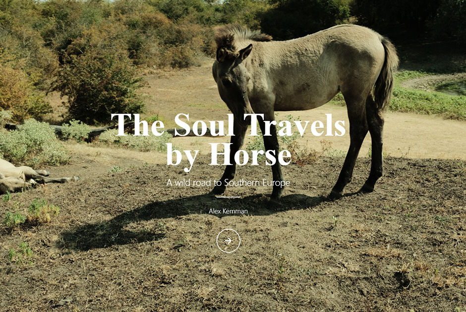 The Soul Travels by Horse